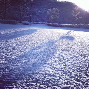 冬になってInstagramにポストする量が増えた気がします
