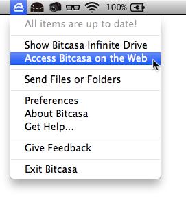 Bitcasa 004